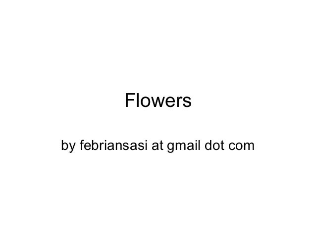 Flowers by febriansasi at gmail dot com