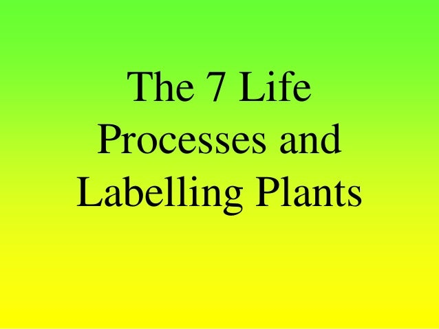 The 7 Life Processes and Labelling Plants