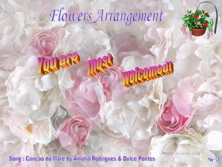 Flowers Arrangement You are most welcomed! Song : Cancao do Mare by Amalia Rodrigues & Dulce Pontes