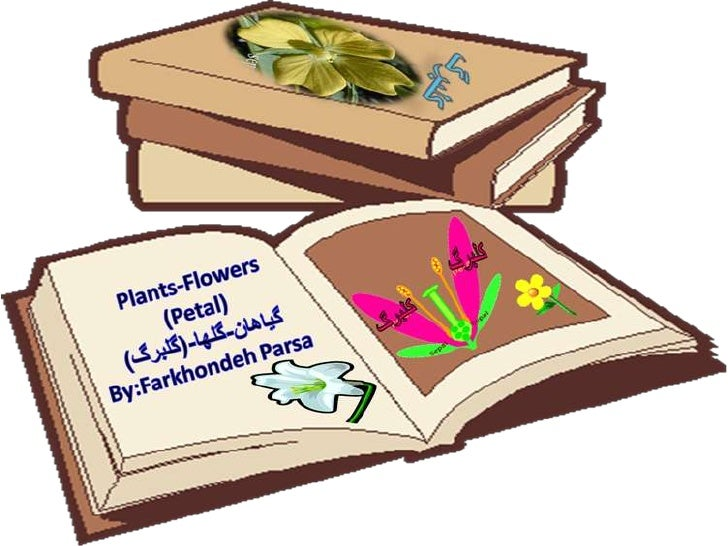 Flowers plants-1