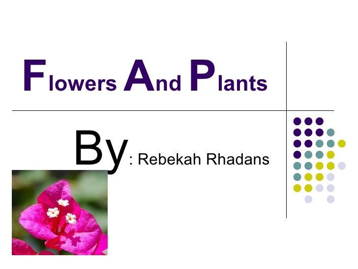 F lowers  A nd  P lants  By : Rebekah Rhadans