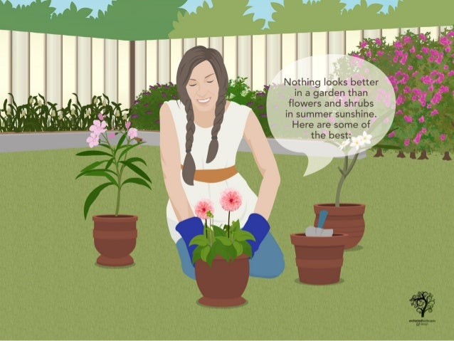 Flowers and Shrubs to Grow This Summer Slide 2