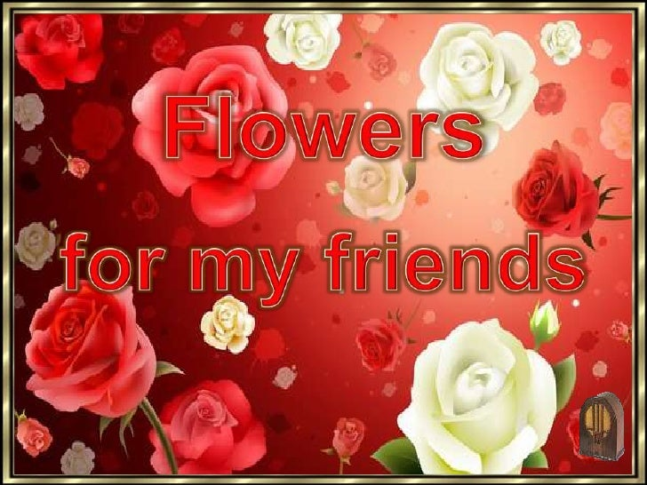 Flowers<br />for my friends<br />