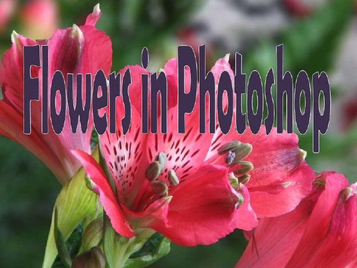 FlowersinPhotoshop<br />
