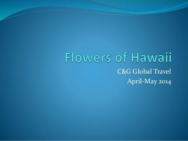 C&G Global Travel April-May 2014