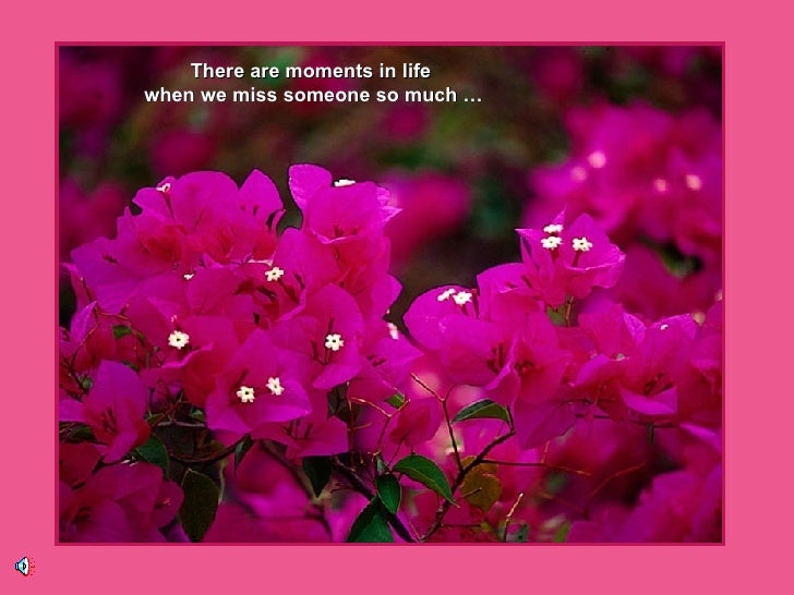 There are moments in life  when we miss someone so much …