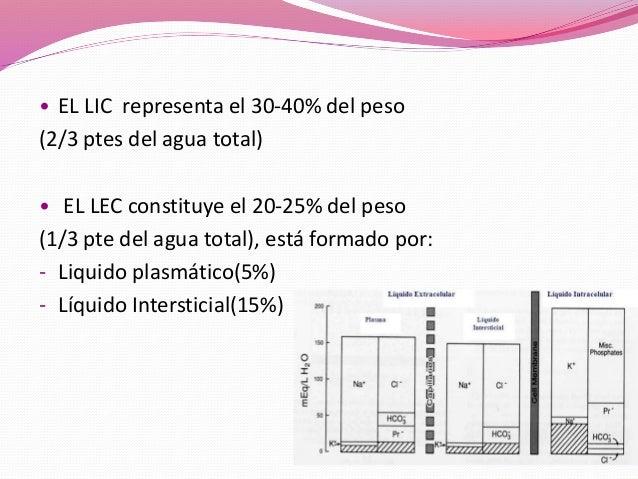 Fluidoterapia Slide 3
