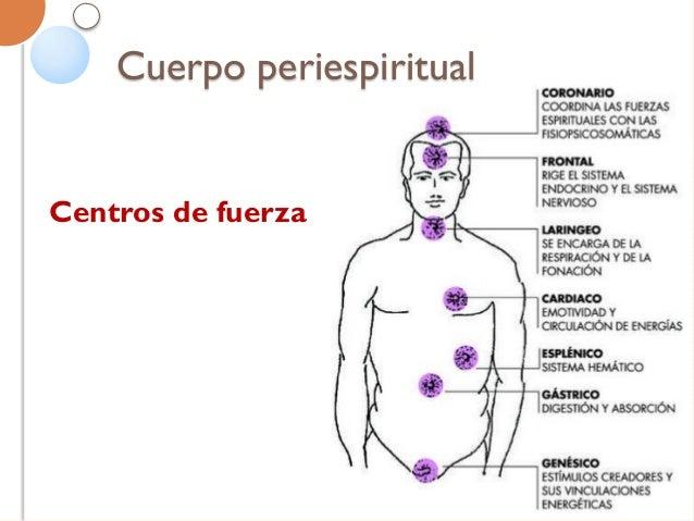 Doble etérico Garantiza el equilibrio entre el alma y el cuerpo. Formado de emanaciones neuropsíquicas relacionadas al cam...