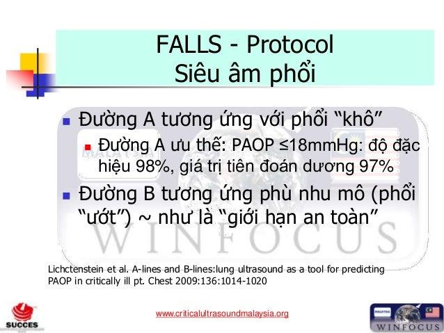 """www.criticalultrasoundmalaysia.org FALLS - Protocol Siêu âm phổi  Đường A tương ứng với phổi """"khô""""  Đường A ưu thế: PAOP..."""