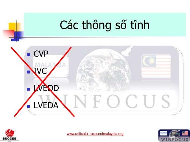www.criticalultrasoundmalaysia.org Các thông số tĩnh  CVP  IVC  LVEDD  LVEDA