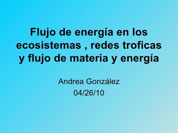 Flujo de energía en los ecosistemas , redes troficas y flujo de materia y energía Andrea González 04/26/10