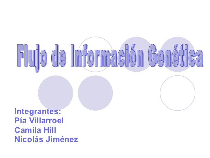 Integrantes:  Pía Villarroel Camila Hill  Nicolás Jiménez Flujo de Información Genética