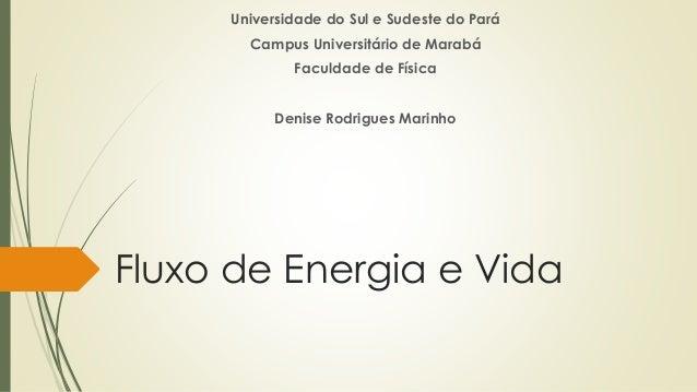 Fluxo de Energia e Vida Universidade do Sul e Sudeste do Pará Campus Universitário de Marabá Faculdade de Física Denise Ro...