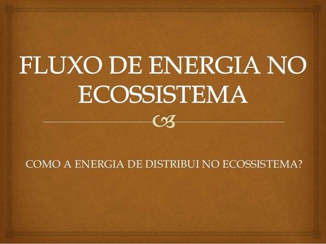 COMO A ENERGIA DE DISTRIBUI NO ECOSSISTEMA?
