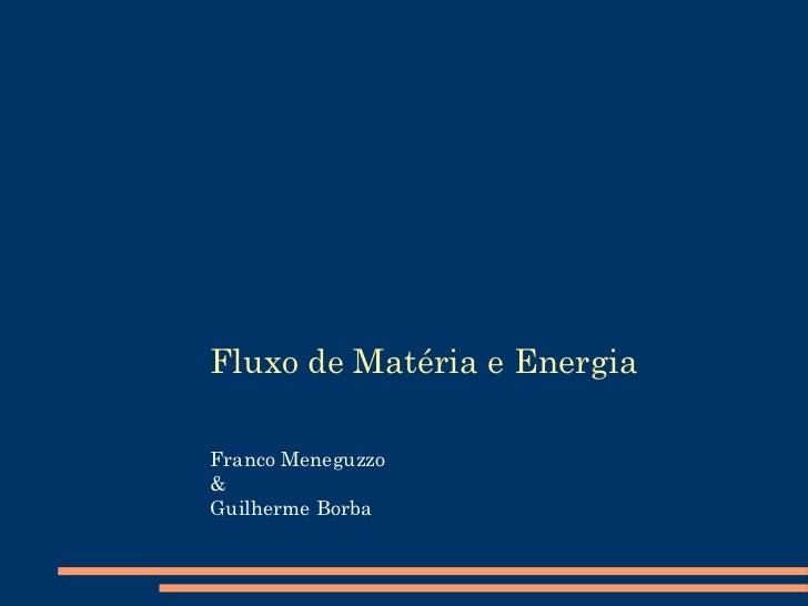 Fluxo de Matéria e Energia Franco Meneguzzo & Guilherme Borba