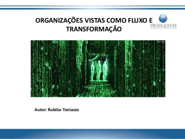 ORGANIZAÇÕES VISTAS COMO FLUXO E TRANSFORMAÇÃO Autor: Rubilar Toniazzo