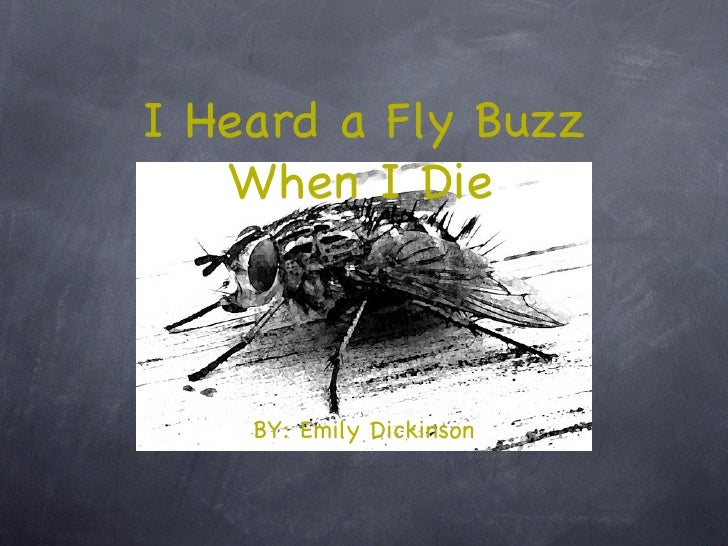 a comparison of because i could not stop for death and i heard a fly buzz when i died Emily dickinson's i heard a fly buzz — when i died  i heard a fly buzz — when i died  and it was only after her death the her sister vinnie .