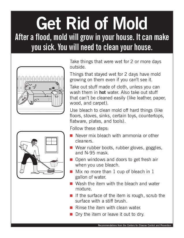 Get Rid of Mold. Take things that were wet for 2 or more daysoutside.Things  that stayed wet for