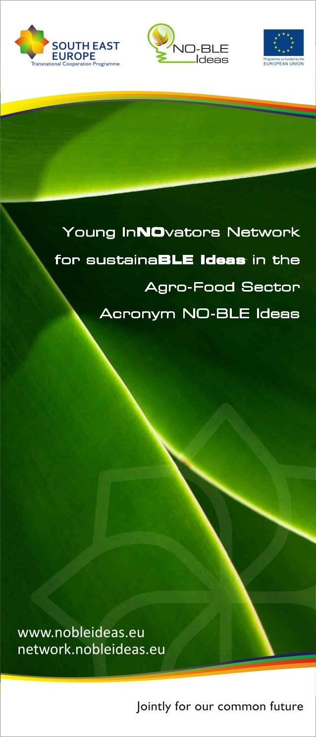NO-BLE Ideas - flyer