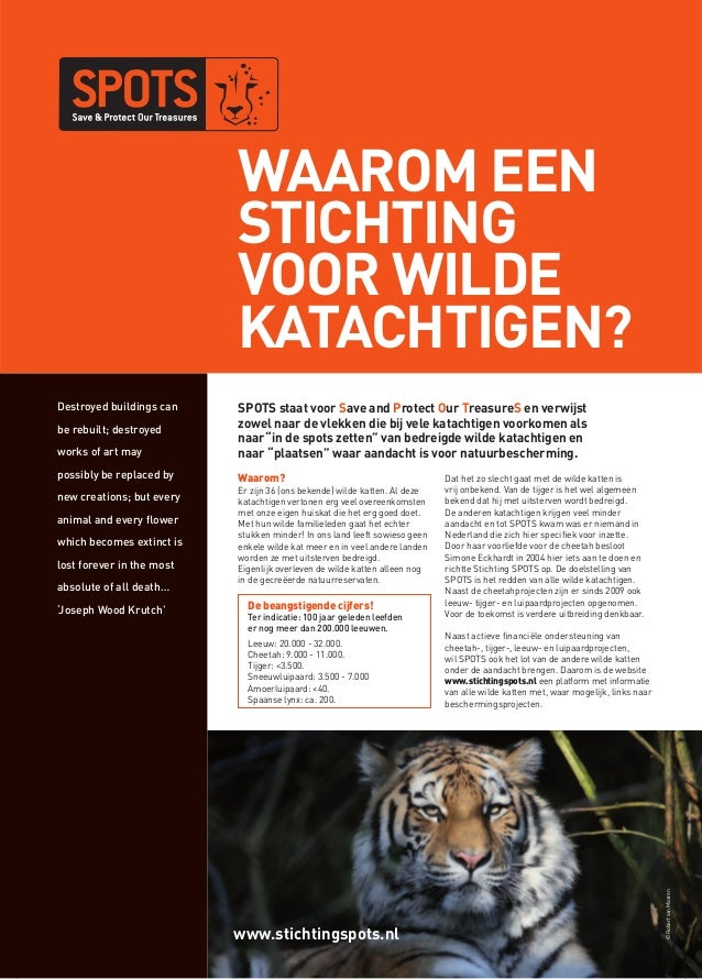 www.stichtingspots.nl©RobertvanMaarenWaarom eenstichtingvoor wildekatachtigen?Destroyed buildings canbe rebuilt; destroyed...
