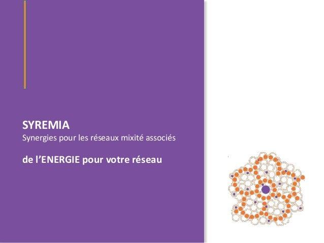 SYREMIASynergies pour les réseaux mixité associésde l'ENERGIE pour votre réseau