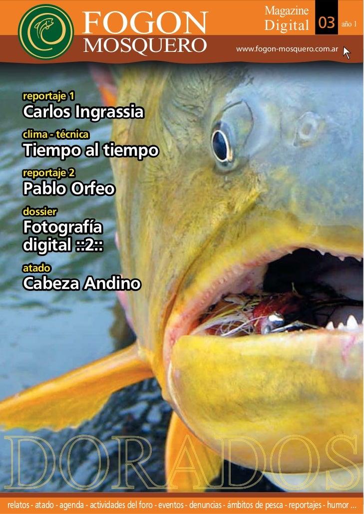 Magazine                       FOGON                                                       Digital 03               año 1 ...