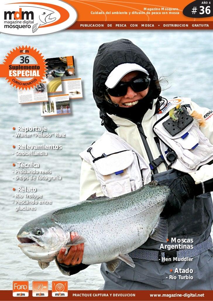 AÑO 4                                                                      Magazine Mosquero.                             ...
