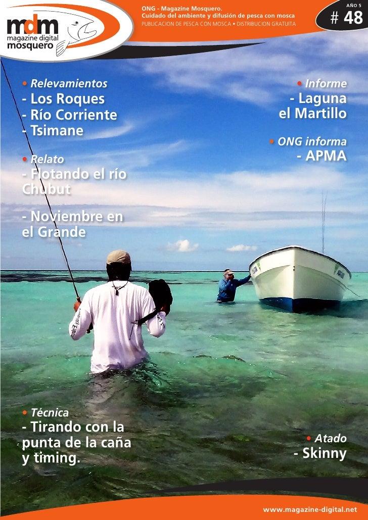 AÑO 5                    ONG - Magazine Mosquero.                    Cuidado del ambiente y difusión de pesca con mosca   ...