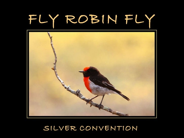 FLY ROBIN FLY SILVER CONVENTION