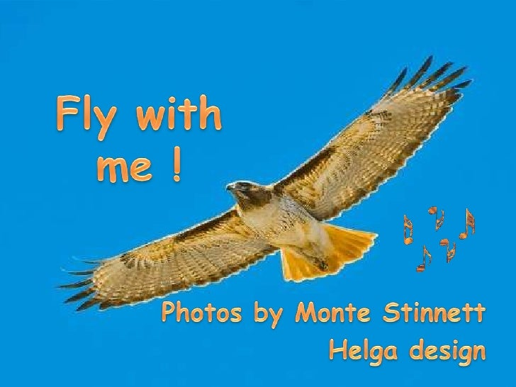 Flywith me !<br />Photosby Monte Stinnett<br />Helga design<br />