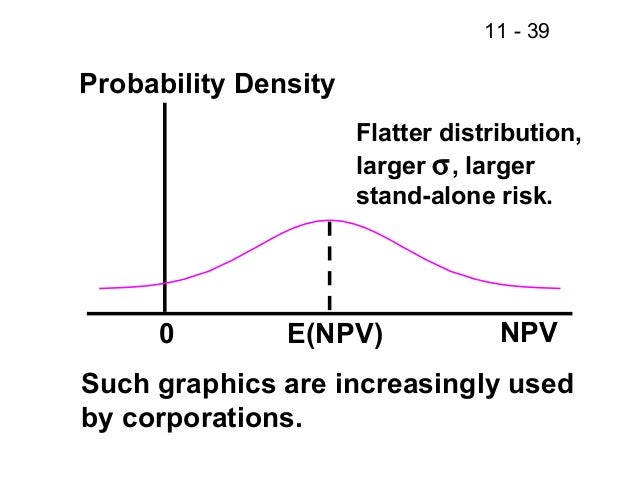 Fm11 chapter 11 Cash Flow and Risk Analysis