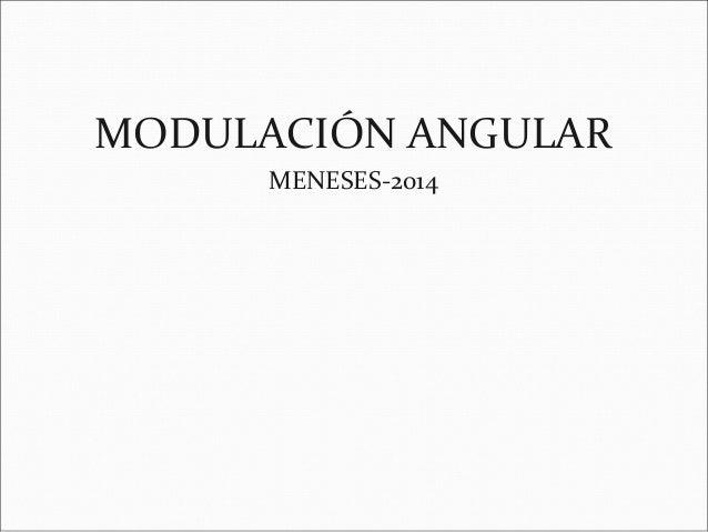 MODULACIÓN ANGULAR MENESES-2014
