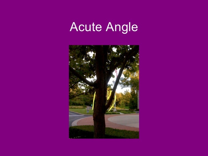 Acute Angles In Real Life : Angles in real life
