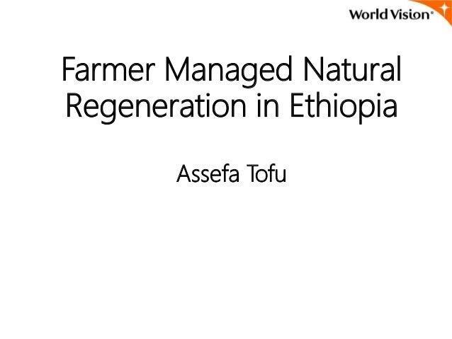 Farmer Managed Natural Regeneration in Ethiopia Assefa Tofu