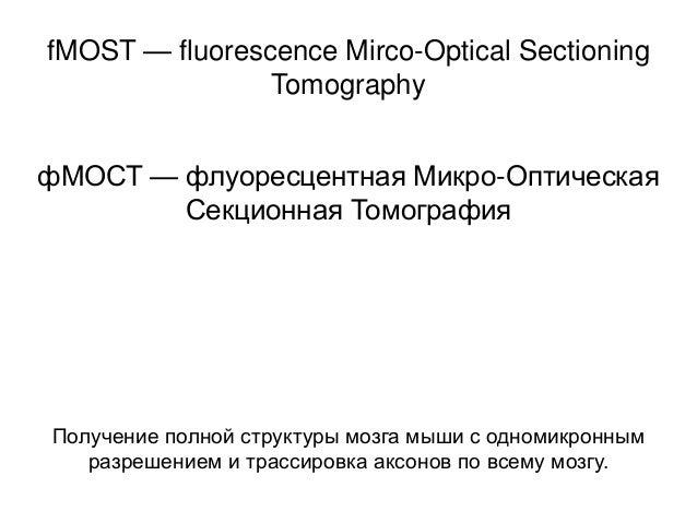 fMOST — fluorescence Mirco-Optical Sectioning Tomography фМОСТ — флуоресцентная Микро-Оптическая Секционная Томография  По...