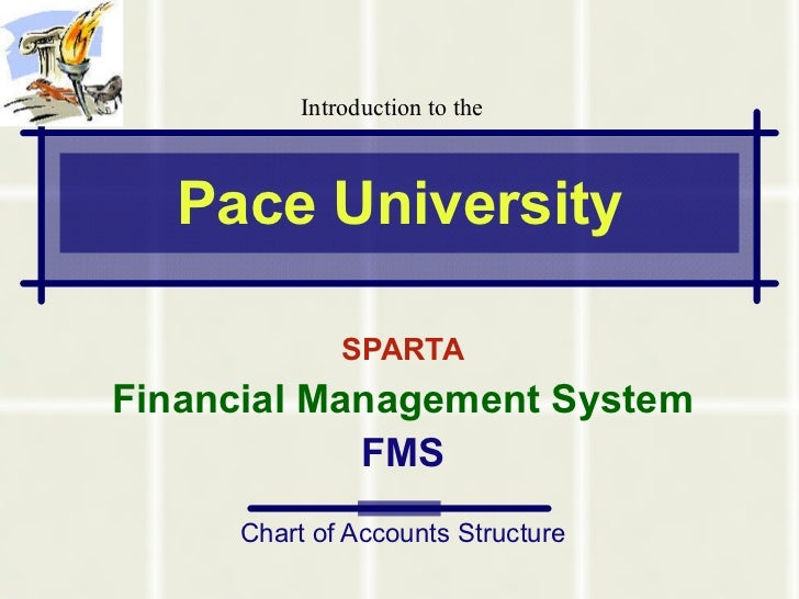 Pace University SPARTA Financial Management System FMS Chart of Accounts Structure Introduction to the