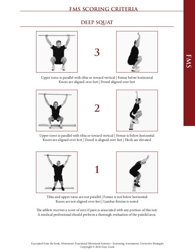 gray cook movement book pdf download