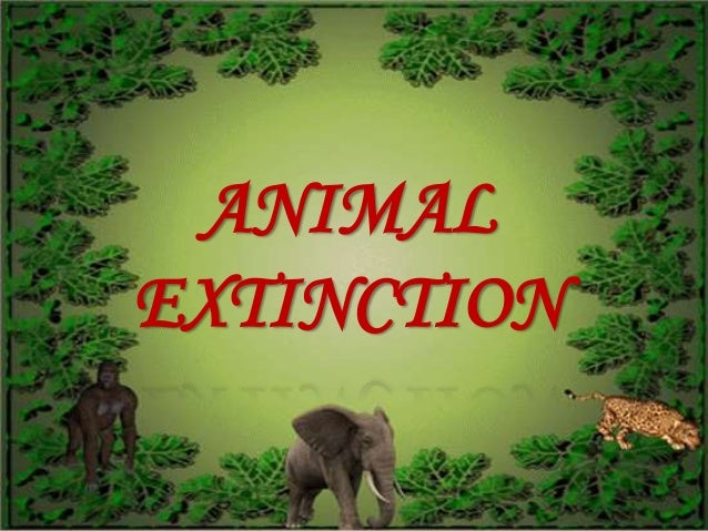 animal extinction essay Name tutor course date species extinction scholars define extinction as the gradual death of a species occasioned by its inability to multiply the earth.