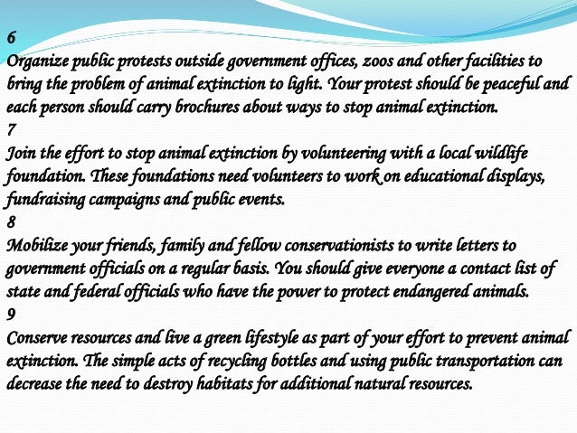 Protect animals from becoming extinct essay