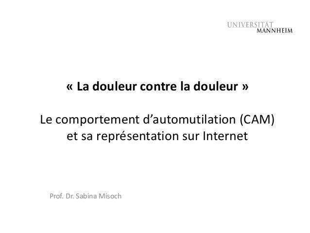 « La douleur contre la douleur »Le comportement d'automutilation (CAM)     et sa représentation sur Internet Prof. Dr. Sab...