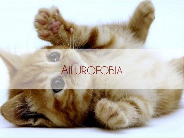 AILUROFOBIA