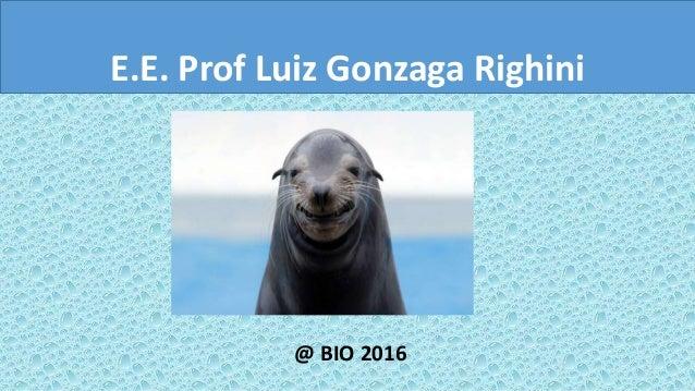 E.E. Prof Luiz Gonzaga Righini @ BIO 2016