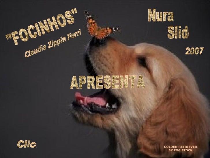 "GOLDEN RETRIEVER BY FOG STOCK Nura Slides ""FOCINHOS"" Claudia Zippin Ferri APRESENTA 2007 Clic"
