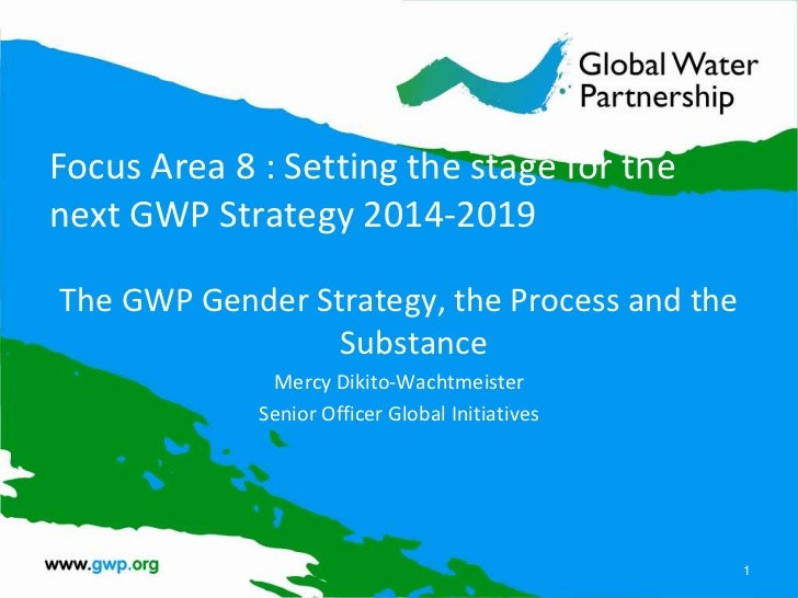Focus Area 8 : Setting the stage for thenext GWP Strategy 2014-2019The GWP Gender Strategy, the Process and the           ...