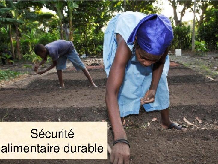 Les projetsAméliorer la sécurité alimentaire par l'introduction del'agriculture de conservation01 avril 2011 au 31 décembr...