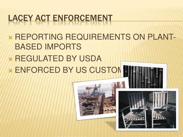 Focus on imports Slide 3