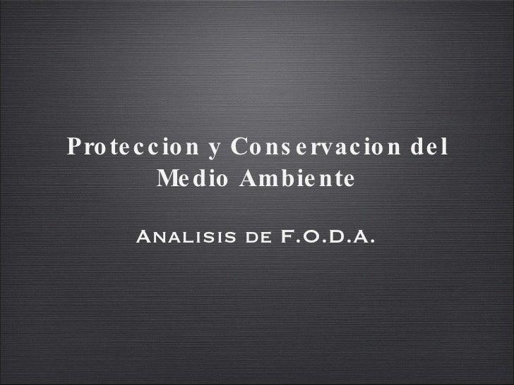 Proteccion y Conservacion del Medio Ambiente <ul><li>Analisis de F.O.D.A. </li></ul>