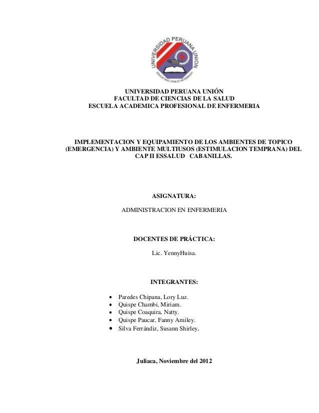 UNIVERSIDAD PERUANA UNIÓN           FACULTAD DE CIENCIAS DE LA SALUD     ESCUELA ACADEMICA PROFESIONAL DE ENFERMERIA  IMPL...