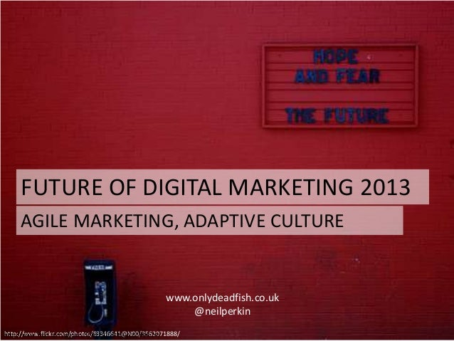 FUTURE OF DIGITAL MARKETING 2013http://www.flickr.com/photos/83346641@N00/3562071888/www.onlydeadfish.co.uk@neilperkinAGIL...
