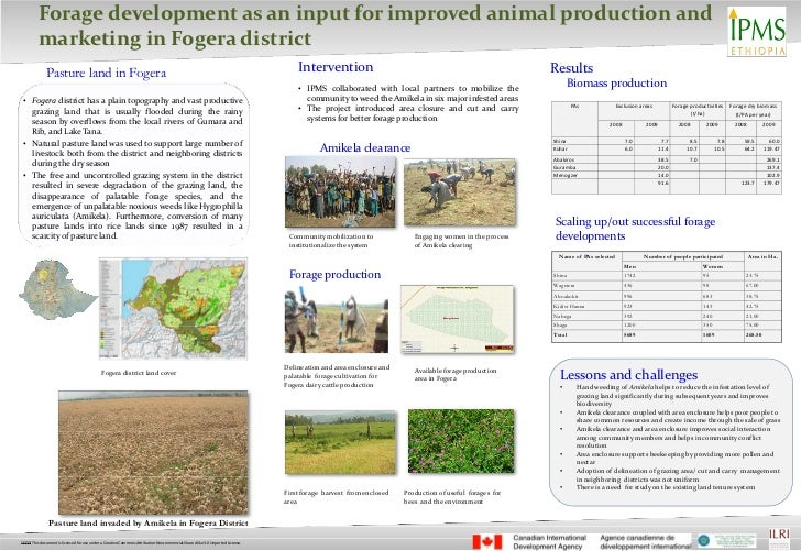 Forage development as an input for improved animal production and      marketing in Fogera district          Pasture land ...